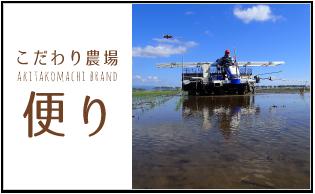 こだわり農場 便り akitakomachi brand