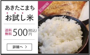 あきたこまち お試し米 円(税込)500送料 無料